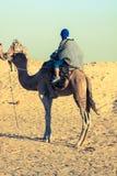 Turistas principales de Beduins en camellos en el viaje turístico corto alrededor Fotografía de archivo