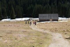 Turistas que andam em caminhar o trajeto no vale de Chocholowska Fotos de Stock Royalty Free