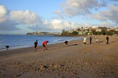 Turistas que apreciam a baía da missão em Auckland Nova Zelândia Imagem de Stock Royalty Free