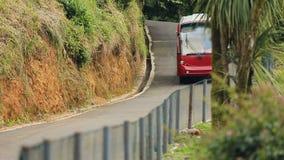 Turistas que apreciam um passeio no ônibus bonde em torno do jardim botânico em Batumi Geórgia filme