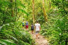 Turistas que caminan en la selva tropical en Guatemala Fotografía de archivo libre de regalías