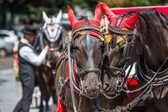 Turistas que esperan del carro del caballo para en el viejo cuadrado en Praga Imagen de archivo libre de regalías