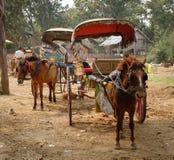 Turistas que esperan del carro del caballo para en la ciudad de Mingun en Mandalay, Myanmar Imagenes de archivo