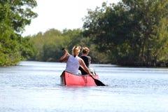 Turistas que kayaking na floresta dos manguezais no parque nacional dos marismas - Floridaa foto de stock royalty free