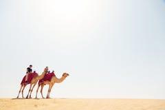 Turistas que montam através do deserto Fotos de Stock Royalty Free