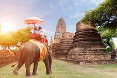 Turistas que montam elefantes nascer do sol em Ayutthaya, Tailândia Imagem de Stock