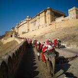 Turistas que montam o elefante ao forte ambarino Imagem de Stock