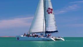 Turistas que montam um barco no macaco Mia filme