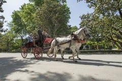Turistas que montan en el carro del caballo en Sevilla foto de archivo libre de regalías