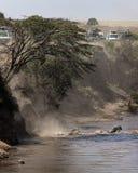 Turistas que olham a grande migração em Kenya África imagens de stock royalty free