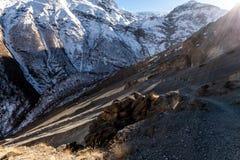 Turistas que suben en el camino del lago Tilicho Viaje de Annapurna, Himalaya, Nepal foto de archivo libre de regalías