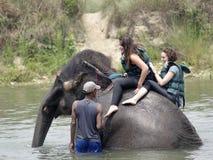 Turistas que tomam o banho do elefante Fotos de Stock