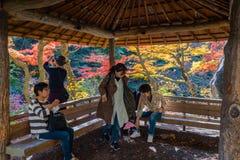 Turistas que toman un resto en el pavillion de madera foto de archivo libre de regalías
