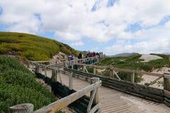 Turistas que van a visitar a la colonia africana de los pingüinos Fotos de archivo