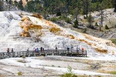 Turistas que visitan la terraza de la primavera de la paleta en Mammoth Hot Springs en el parque nacional de Yellowstone Fotos de archivo libres de regalías