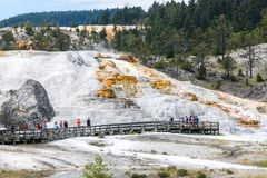 Turistas que visitan la terraza de la primavera de la paleta en Mammoth Hot Springs en el parque nacional de Yellowstone Imagen de archivo