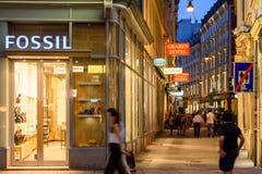 Turistas que visitan y que hacen compras en la calle de Graben en la noche Fotografía de archivo libre de regalías