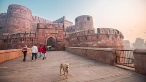 Turistas y un perro que visita el fuerte de Agra en Agra, la India fotografía de archivo