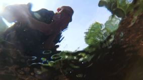 Turisten är dricksvatten från en bergström Sikt från under vattnet lager videofilmer