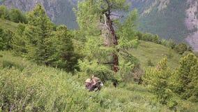 Turisten gör deras väg till och med det höga berget i bergen stock video