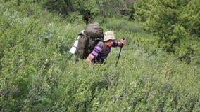 Turisten gör deras väg till och med det höga berget i bergen lager videofilmer