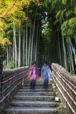 Turisten som går upp trappa för att besöka bambuskogen i Adashino royaltyfri bild