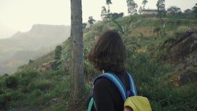 Turisten tar fotosikt av tekolonin i Sri Lanka arkivfilmer