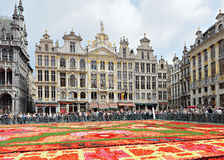 Turister beundrar blommamattan i Bryssel Royaltyfria Foton