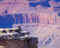 turister för arizona kanjontusen dollar Royaltyfri Bild