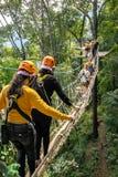 Turister går på gångbanan för repbron till och med treetopsna in Arkivbild