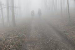 Turister i den dimmiga skogen royaltyfria foton