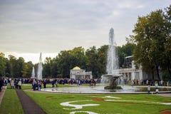 Turister i det Peterhof landskapet parkerar, St Petersburg, Ryssland Royaltyfri Fotografi
