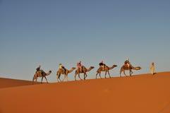 Turister i en kamelhusvagn Royaltyfri Fotografi