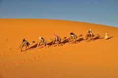 Turister i en kamelhusvagn i Mer Fotografering för Bildbyråer