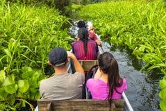 Turister i kanot i amasonrainforesten royaltyfri fotografi