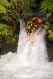 Turister kasta sig ner en vattenfall på ett vitt vatten som rafting kurs på Kaituna kaskader i Rotorua Nya Zeeland royaltyfri fotografi