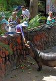 Turister matar djur i Konungariket Thailand royaltyfri bild