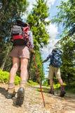Turister med trekking poler bakifrån Royaltyfria Bilder