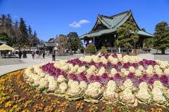 Turister och japan som går i Naritasan Shinshoji tempelgrou Arkivbild