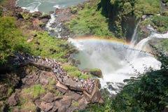 Turister och regnbåge på Iguazu Falls Royaltyfria Bilder