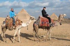 Turister på de stora pyramiderna av Giza royaltyfri foto