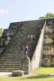 Turister på den Mayan pyramiden i Tikal Royaltyfri Foto