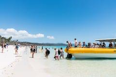 Turister på den Whitehaven stranden, Hamilton Island, Australien arkivfoto