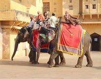 Turister på elefanter i det Jaipur fortet Indien Arkivfoton