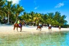 Turister på hästar som promenerar kusten av Indiska oceanen Royaltyfri Fotografi