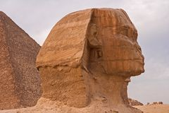 Turister på kamel i Egyptqueen av hatshepsut, fördärvar av templet royaltyfri fotografi