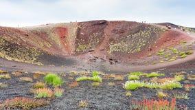 Turister på kanten av den stora krater på Mount Etna Arkivbilder