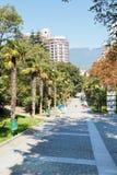 Turister på Palm gränden i Primorskiy parkerar i Yalta Royaltyfri Fotografi