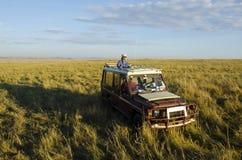Turister på safari Arkivbilder