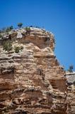 Turister på siktspunkt på den Grand Canyon nationalparken Arizona royaltyfri bild